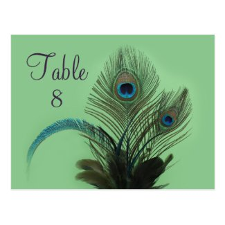 Elegant Peacock Table Number (green) Post Cards