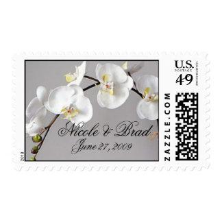 Elegant Phalaenopsis Orchid stamp