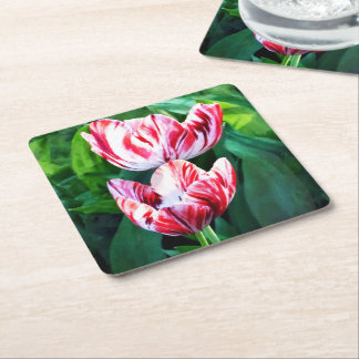 Elegant Pink And White Striped Tulips Square Paper Coaster
