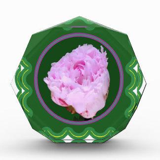 Elegant Pink Rose Flower Floral print on 100 gifts