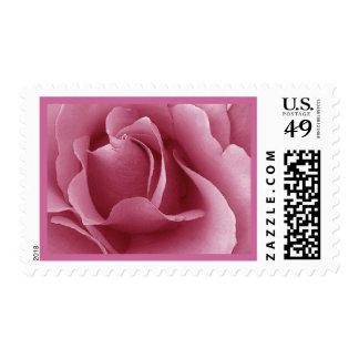 Elegant PINK Wedding Rose Stamp
