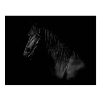 Elegant portrait of a black Friesen of horse Postcard