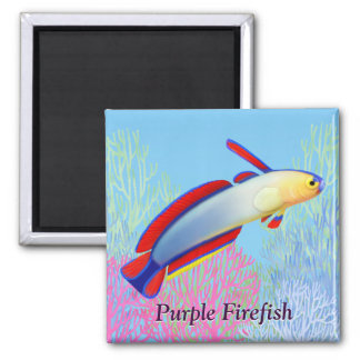 Elegant Purple Firefish Goby Magnet