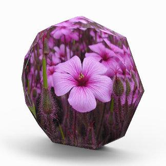 Elegant Purple Floral Fields Award