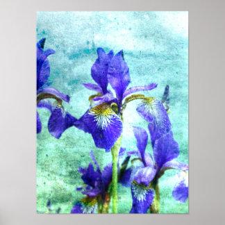 Elegant Purple Irises Watercolor Effects Poster