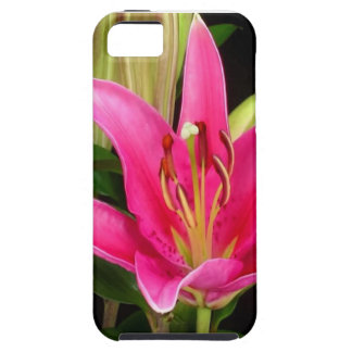 Elegant Purple Pink Flower Floral Gifts Template iPhone 5 Covers