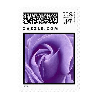 Elegant Purple Rose Wedding Stamp