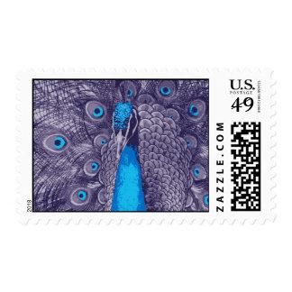 Elegant Purple Teal Peacock Postage Stamp