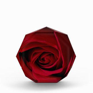 Elegant Red Rose Acrylic Award