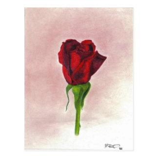 Elegant Red Rose by CricketDiane Postcard