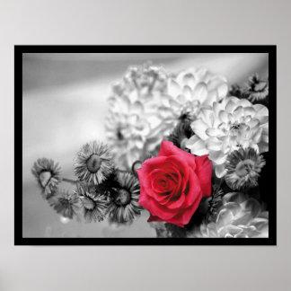 Elegant Red Rose Poster