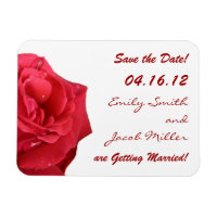 Elegant Red Rose Save the Date Magnets