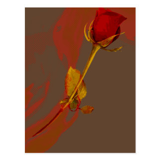 elegant red rose with a golden touch post card