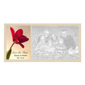 Elegant Red Tulip Wedding Save the Date Card