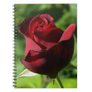 Elegant Red Velvet Rose Notebook