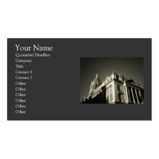 Elegant Refined Architecture Double-Sided Standard Business Cards (Pack Of 100)