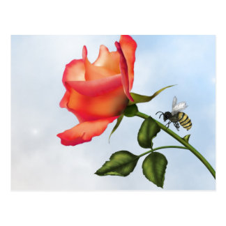 Elegant Rose and Bee 1 Postcard
