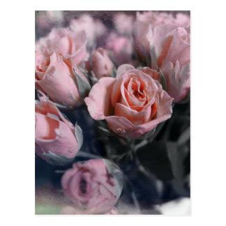 Elegant Rose Bouquet Postcard