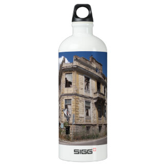 Elegant Ruin Aluminum Water Bottle
