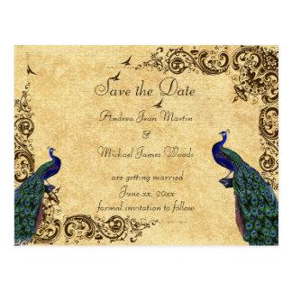 Elegant, Save the Date, Peacocks, Custom Postcard