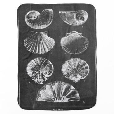 Beach Themed elegant seashells beach art vintage chalkboard stroller blanket