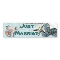 Elegant Seashells Beach Wedding Stationery Bumper Sticker