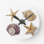 Elegant seashells shabby chic beach round wallclock