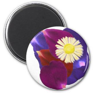 Elegant Sensual Rose Petal Art Magnets
