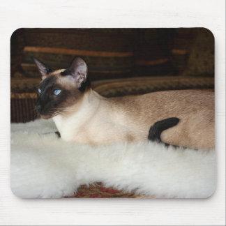 Elegant Siamese Cat Mouse Pad