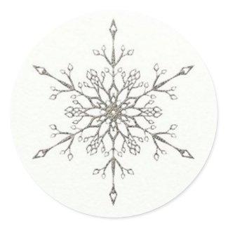 Elegant Silver Snowflake