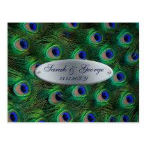 elegant silver turquoise peacock wedding RSVP Postcard
