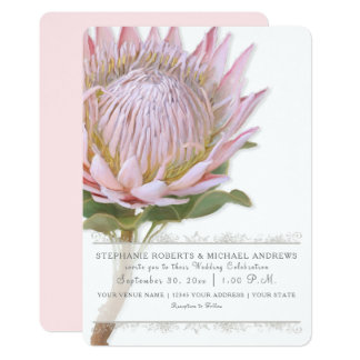 Elegant Simple Modern Floral Pink Protea Flower Card