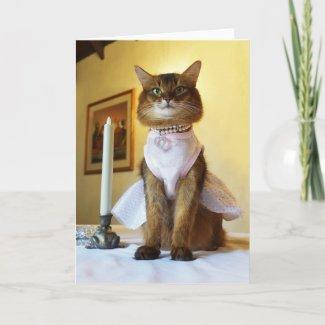 Elegant Somali Cat Invitation, Party, or Greeting Card