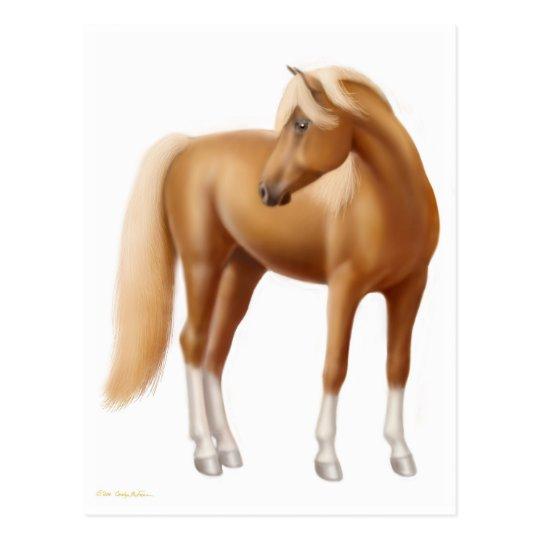 Elegant Sorrel Horse Postcard