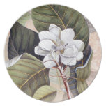 Elegant Southern White Magnolia Catesby Dinner Plate