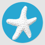 Elegant Starfish Sea Star Round Stickers