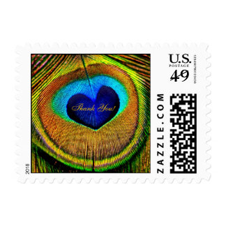 Elegant Thank You Peacock Feathers Eye of Love Postage