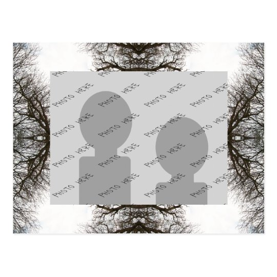 Elegant Tree Pattern Postcard