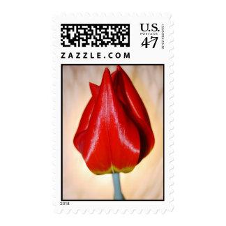Elegant Tulip Postage