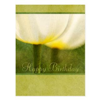 Elegant Tulips Birthday Postcard