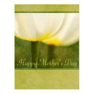 Elegant Tulips Mother's Day Postcard