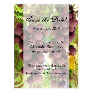 Elegant Vineyard Purple/Green Grapes Save the Date Postcard