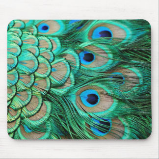 Elegant Vintage Peacock  feather Mouse Pad