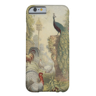 Elegant Vintage Peacock Other Birds iPhone 6 Case