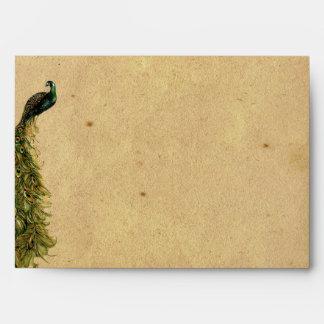 Elegant Vintage Peacock Posh Wedding Envelope