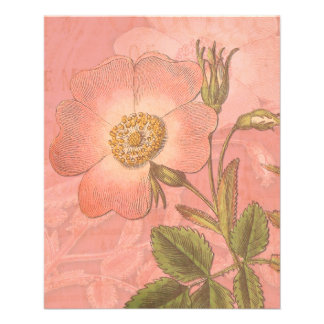 "Elegant Vintage Rose Peach Colored Background 4.5"" X 5.6"" Flyer"