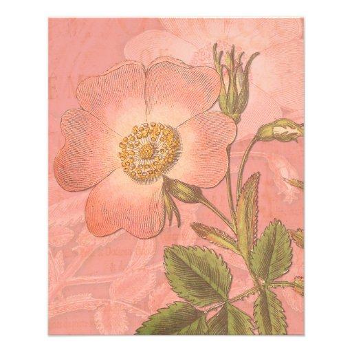 Elegant Vintage Rose Peach Colored Background Flyer Design
