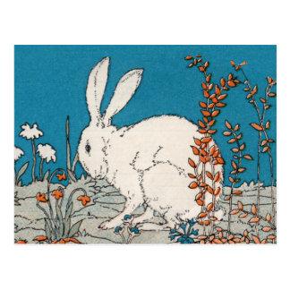 Elegant Vintage White Rabbit Postcard