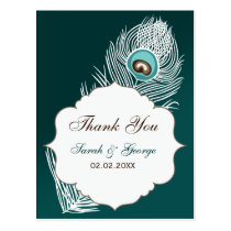 Elegant white and teal peacock Thank You Postcard