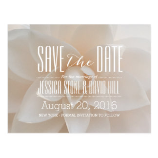Elegant White Floral Wedding Save the Date Postcard